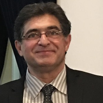 Hamid Garmestani